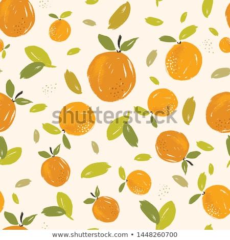 オレンジ果実 · パターン · フルーツ · 点数 · 行 - ストックフォト © MilAlena
