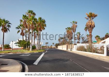 開発 テネリフェ島 カナリア諸島 風光明媚な 表示 典型的な ストックフォト © 1Tomm