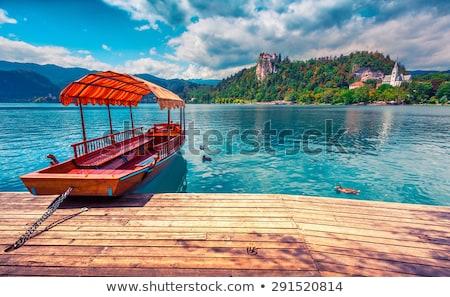 озеро утки живописный мнение Словения мужчины Сток-фото © 1Tomm
