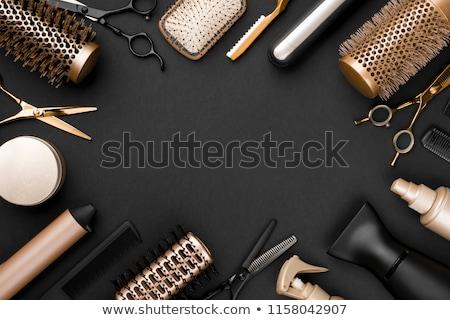 Haren stilist illustratie vrouwen schoonheid retro Stockfoto © adrenalina