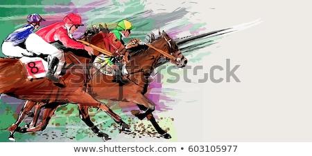 grunge horse stock photo © lindwa