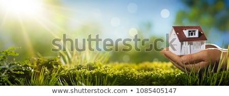 Handen klein huis onroerend verzekering home Stockfoto © fantazista