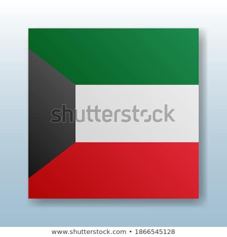 кнопки символ Кувейт флаг карта белый Сток-фото © mayboro1964