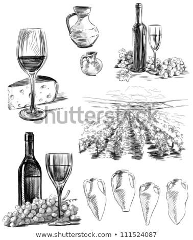 glass of wine, bottle and amphora Stock photo © alinamd