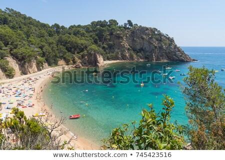 coves of cala llorell beach in tossa de mar spain stock photo © nito