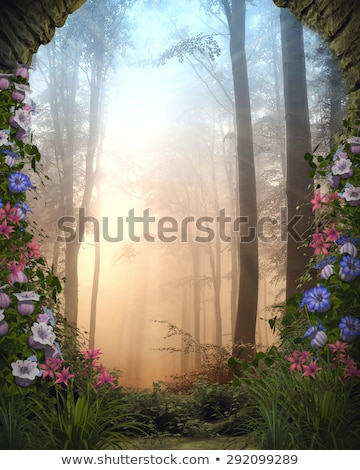Stock photo: Pink flowers surrounded by stones