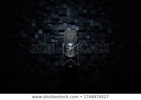 Lemez pók fekete rpm doboz Stock fotó © Bigalbaloo
