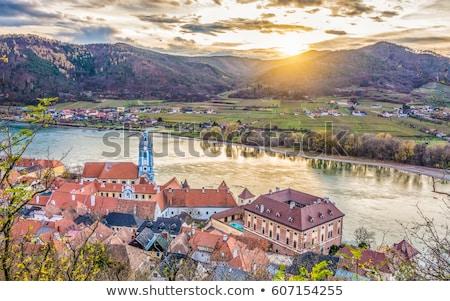 view of autumnal vineyard lower austria austria stock photo © phbcz