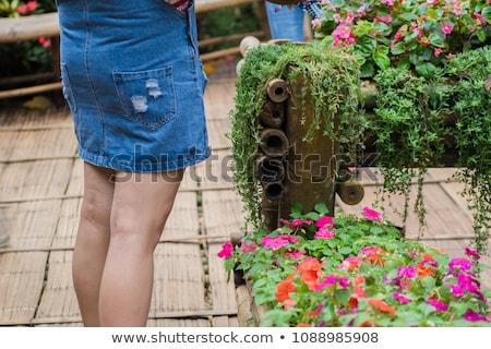 Sexy girl butt handen lichaam schoonheid Maakt een reservekopie Stockfoto © ozaiachin