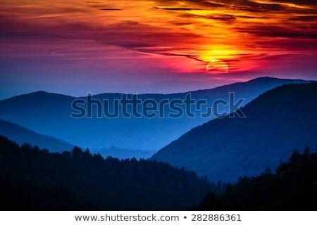 enfumaçado · montanhas · parque · Carolina · do · Norte · Tennessee - foto stock © alex_grichenko