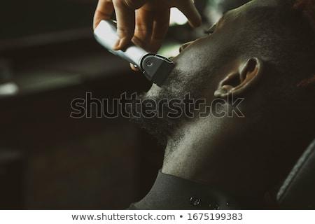 Pelo negro nariz oído pelo aislado Foto stock © PetrMalyshev