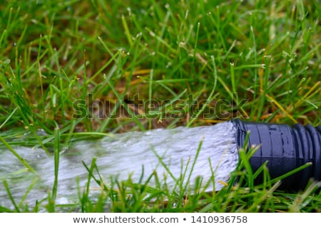 Backup Sump Pump Stock photo © icemanj