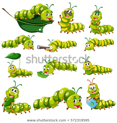 Green caterpillar character in different actions Stock photo © bluering