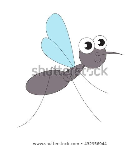 Preto engraçado mosquito silhueta ícone isolado Foto stock © blumer1979