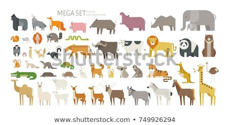 Hippo Vector Illustration in Flat Design Stock photo © robuart