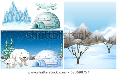 Polar bears and igloo on snow field Stock photo © bluering
