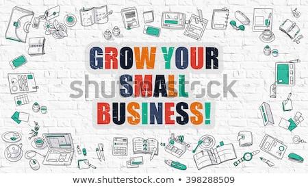multicolor developing business on white brickwall doodle style stock photo © tashatuvango
