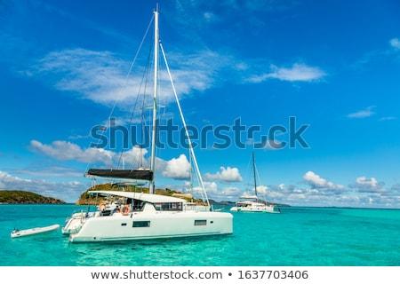 Katamaran caribbean plaj bulutlar okyanus Stok fotoğraf © chrisukphoto