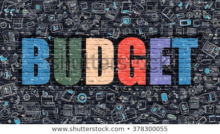 Budget Planning Concept. Multicolor on Dark Brickwall. Stock photo © tashatuvango