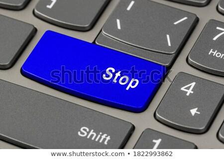 Blue Stop Key on Keyboard. Stock photo © tashatuvango