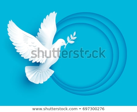 White dove holds twig symbol of peace Stock photo © orensila