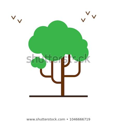 trees set the seasons icon flat style isolated on white background vector illustration stock photo © lucia_fox