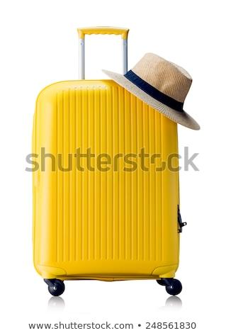 Red travel suitcase isolated icon stock photo © studioworkstock