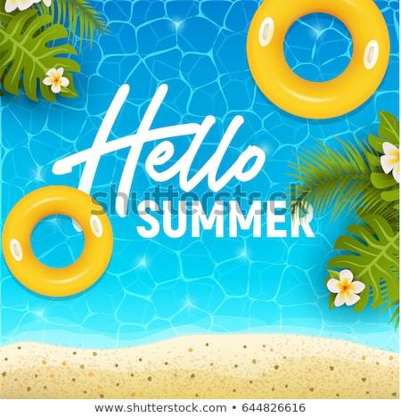 Verão teia bandeira olá férias de verão festa Foto stock © ikopylov