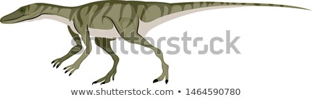 Cute vector cartoon dinosaurs isolated on white background stock photo © Natali_Brill