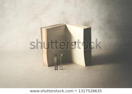 okazja · odkrycie · ściany · konkretnych · bloków · jeden - zdjęcia stock © lightsource