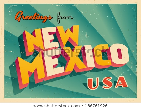 Cartoon New Mexico illustratie glimlachend grafische amerika Stockfoto © cthoman