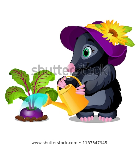 Cute animated mole watering beets from watering can. Vector cartoon close-up illustration. Stock photo © Lady-Luck