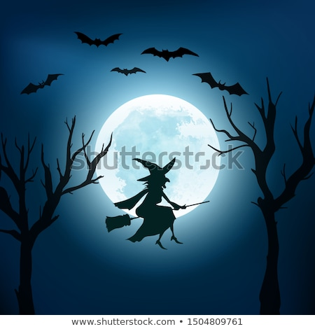 halloween party banner background with full moon and bats vector illustration stock photo © ikopylov