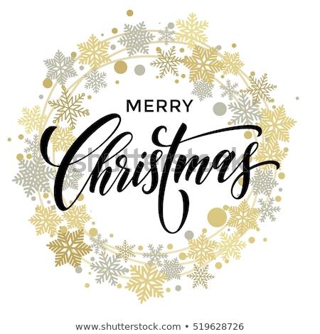 Vrolijk christmas illustratie lichten guirlande goud Stockfoto © articular
