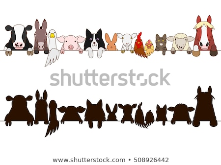 set of farm animals border stock photo © bluering