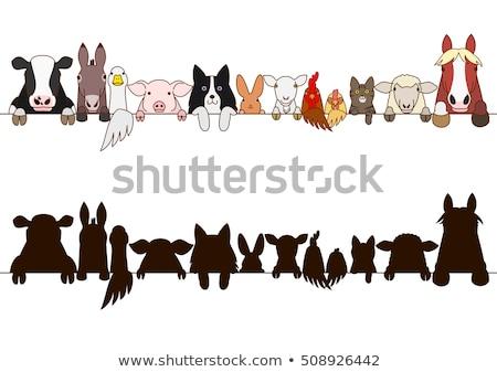 Stockfoto: Ingesteld · boerderijdieren · grens · illustratie · hout · paard