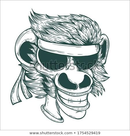 Rajz mosolyog karate csimpánz grafikus Stock fotó © cthoman