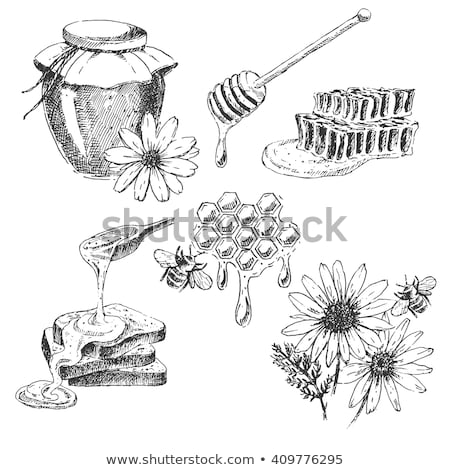 dolce · miele · api · battenti · in · giro · vettore - foto d'archivio © rastudio