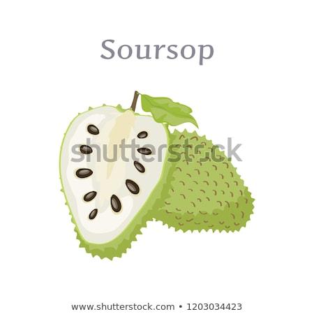 Egész vág gyümölcs ehető növény vektor Stock fotó © robuart