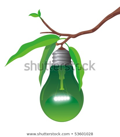 vegetables fruits light bulb illustration stock photo © lenm