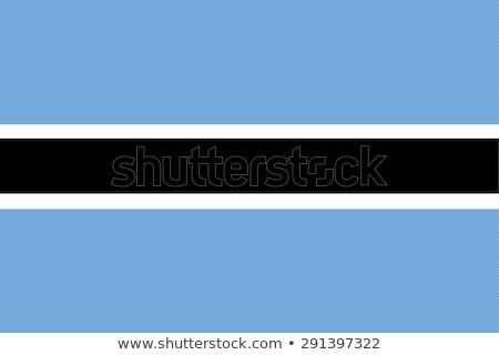Botswana flag, vector illustration Stock photo © butenkow