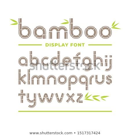 Fonte projeto natureza panda bambu ilustração Foto stock © colematt