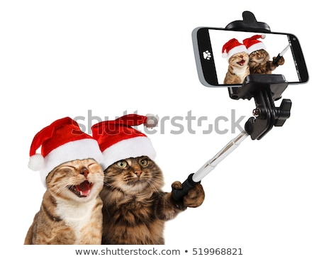 couple taking picture by selfie stick at christmas Stock photo © dolgachov