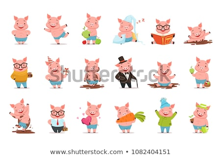 cute piggy vector character set of emotional pig stock photo © bonnie_cocos