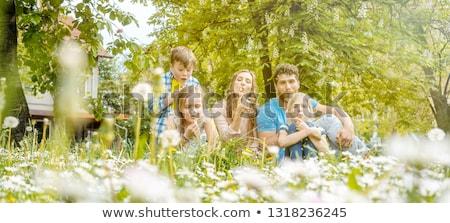 family of five sitting on a meadow blowing dandelion flowers stock photo © kzenon