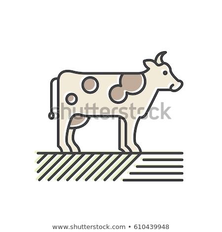 caseificio · latte · mucca · pop · art · retro - foto d'archivio © robuart