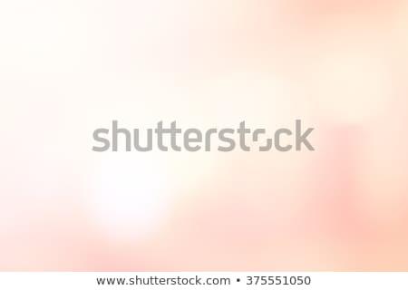 Perzik roze realistisch restaurant eten Stockfoto © ConceptCafe