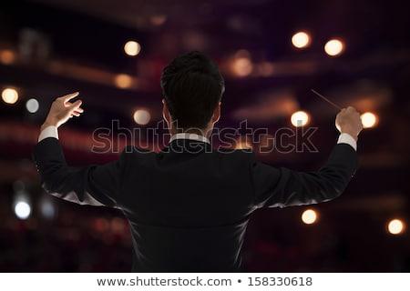 Chinese muziek ingesteld mannen klassieke muziek spelen Stockfoto © toyotoyo