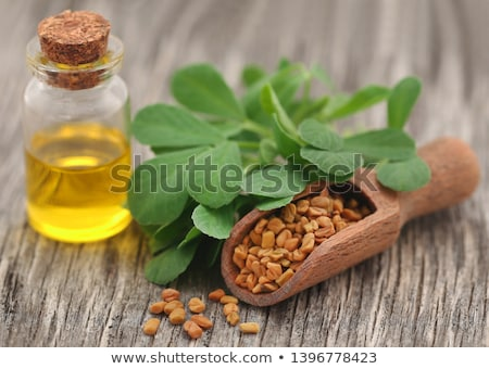 Fenugreek leaves with essential oil Stock photo © bdspn