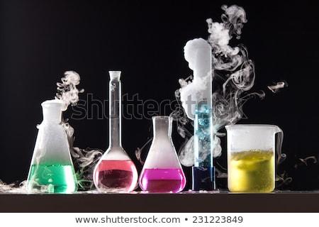 A Chemist Holding Beaker and Test Tube Stock photo © colematt